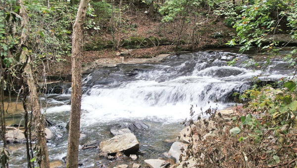 Pictured is Siller's Falls along the newly completed Vaughn Creek Greenway in Tryon that should be open to the public in a couple of weeks. An official opening is being planned by the Tryon Parks Committee in early spring 2014. (photo submitted by John Vining)